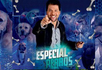 <i>Especial Perros</i> desembarcó en Paraguay