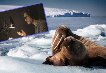 Con música de Radiohead y narración de Gael García Bernal, Discovery presenta <i>Planeta  Azul II</i>