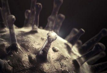 Discovery Channel estrena <i>VIRUS</i>